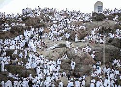 লাব্বাইক, আল্লাহুম্মা লাব্বাইক ধ্বনিতে মুখরিত আরাফাত