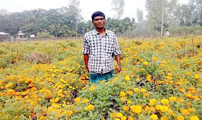 সুন্দরগঞ্জে ফুল চাষে স্বাবলম্বী লিটন
