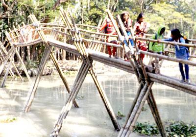 কাউখালীতে ঝুকির মধ্যে শিশুদের সাঁকো পার