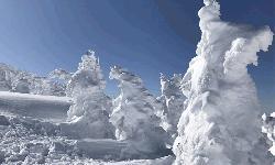 জাপানের তুষার দৈত্য (ভিডিও)